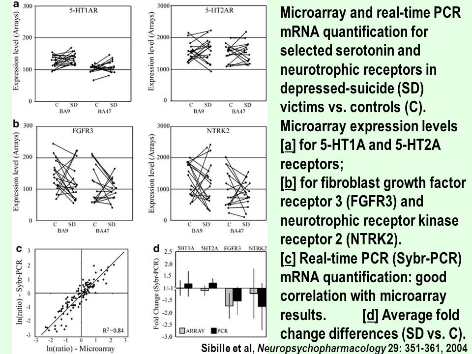 Microarray and real-time PCR mRNA quantification for selected serotonin and neurotrophic receptors in depressed-suicide (SD) victims vs. controls (C). Microarray expression levels [a] for 5-HT1A and 5-HT2A receptors; [b] for fibroblast growth factor receptor 3 (FGFR3) and neurotrophic receptor kinase receptor 2 (NTRK2). [c] Real-time PCR (Sybr-PCR) mRNA quantification: good correlation with microarray results. [d] Average fold change differences (SD vs. C).